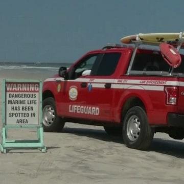 IMAGE: New Smyrna Beach, Fla.