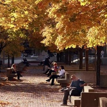 People sit under a canopy of fall leaves during a warm afternoon in Boston