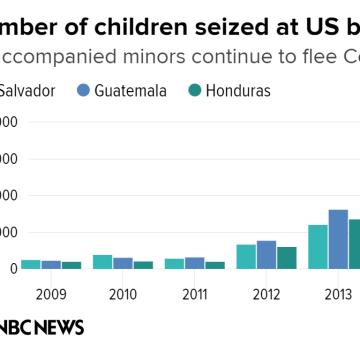 IMAGE: Immigration chart
