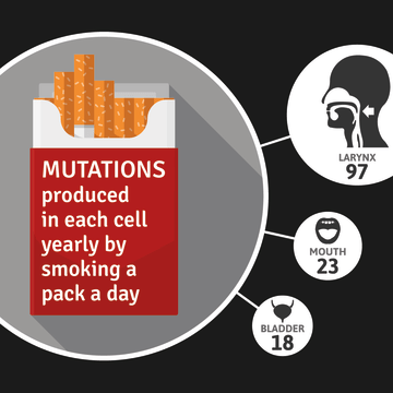 Image: Mutations produced by smoking