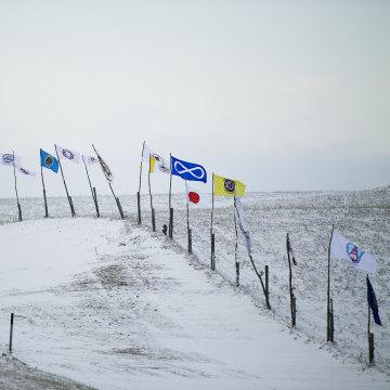 Image: Dakota pipeline protests