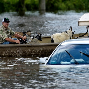 Image: Louisiana flooding