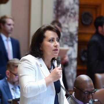 Minnesota State Senator Patricia Torres Ray (D-63)