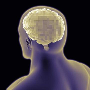 Conceptual image of human brain.