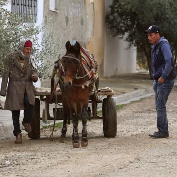Image: Terror suspect Anis Amri left Tunisia for a better life, his family said.e in Oueslatia, Tunisia