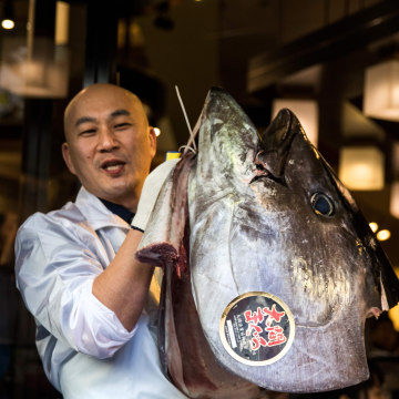 Image: Restaurant worker with head of bluefin tuna