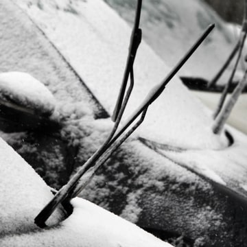 Image: Car drivers leave their windshield wipers up in order to avoid that they freeze up.