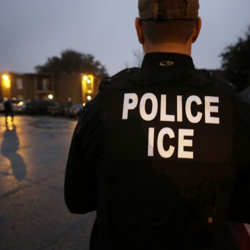 Image: U.S. Immigration and Customs Enforcement agents are pictured.