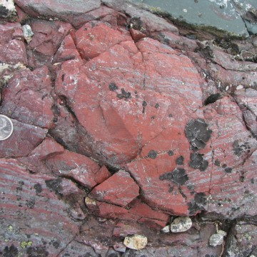 Image: Layer-deflecting bright red concretion of haematitic chert