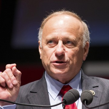 Image: Representative Steve King speaks during the Freedom Summit in Greenville