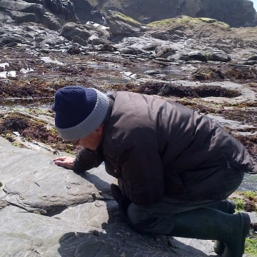 Image: Richard Pearce counts limpets