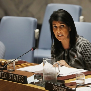 Image: United Nations Security Council Meets To Discuss Situation In Syria