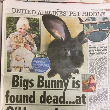 Image: How British tabloid The Sun reported Simon's demise.
