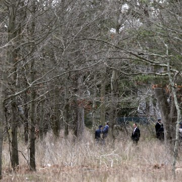 Image: Crime scene investigators search woodland near where the victims were found
