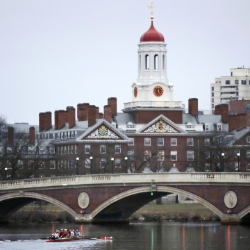 Rowers paddle along the Charles River past the Harvard College campus in Cambridge.