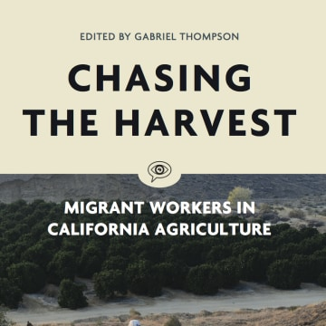 "Cover of Voice of Witness' book ""Chasing the Harvest"""