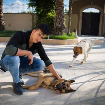 Image: Atayeb Odeh with his dogs Liza and Rex