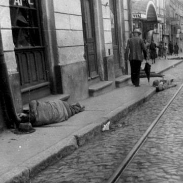 Image: Bodies of Murdered Jews