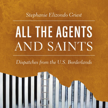 Image: All The Agents and Saints Book Cover