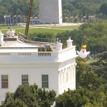 Image: A giant inflatable chicken next to the White House