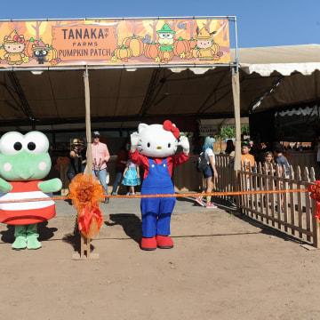 Keroppi and Hello Kitty, Tanaka Farms