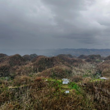 Image: An aerial view shows trees and buildings damaged by Hurricane Maria in Puerto Rico