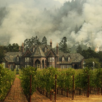 Image: A wildfire burns behind a winery