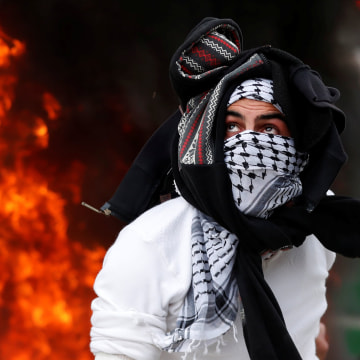 Image: A Palestinian protester