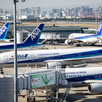 Image: All Nippon Airways (ANA)