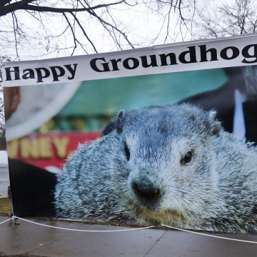 Image: Punxsutawney Phil predicts the Weather on Groundhog Day