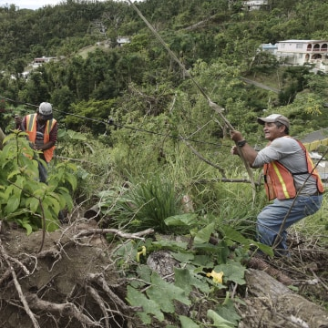Image: Municipal workers install power poles