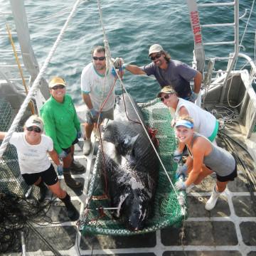 Florida State University Coastal and Marine Laboratory Caption