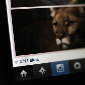 The number of likes on an Instagram photo are pictured on a mobile device screen in Pasadena, California August 14, 2013. Researchers with RSA securit...