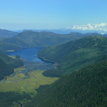 Tongass National Forest in Alaska