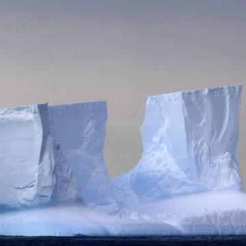 Image: Icebergs