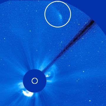 Image: ISON from SOHO