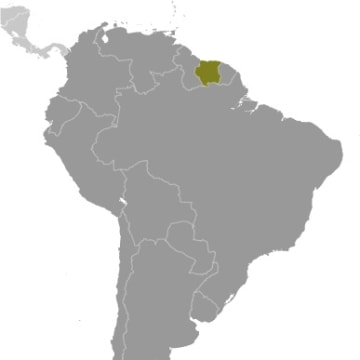 Image: Suriname