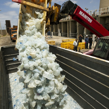 A digger drops jellyfish cleared from the power station in Hadera, after they blocked the water supply to the plant on July 5, 2011 in the Israeli coa...