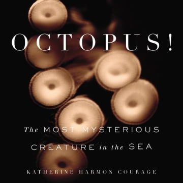 OCTOPUS! plunges deep into the bizarre world of these stunningly smart, solitary deep ocean dwellers.