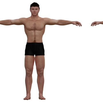 ideal to real what the perfect body really looks like - 360×360