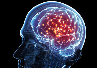 Three Myths About the Brain (That Deserve to Die)