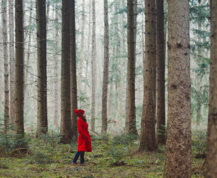 How the Simple Act of Being in Nature Helps You De-Stress