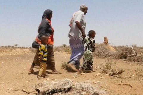 Severe Drought Grips Horn of Africa