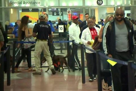 Long TSA Lines Dog Memorial Day Travelers