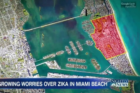 Growing Worries Over Zika After Outbreak Now Hits Miami Beach