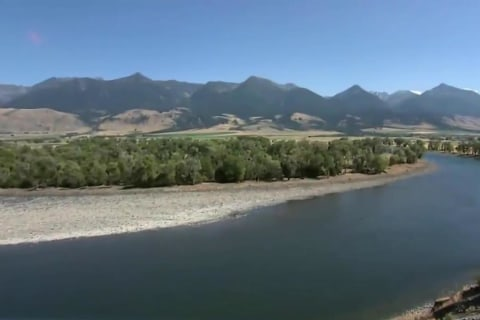 Nearly 200 Miles of Yellowstone River Closed as Parasite Threatens Wildlife