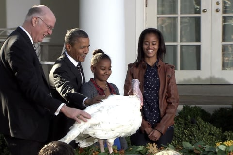 Pardons and 'Dad Jokes': Obama's Top Turkey Moments