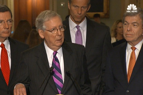 McConnell: Senate Tax Reform Efforts Likely to Be Republican-Only