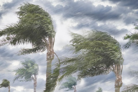 How Hurricanes Get Their Names