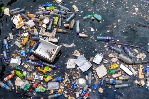 Plastic pollution in oceans and lakes means health risks for humans